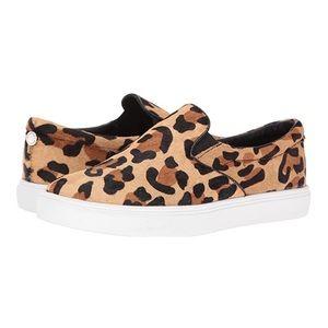 Steve Madden Ecentric Leopard Slip On Sneaker